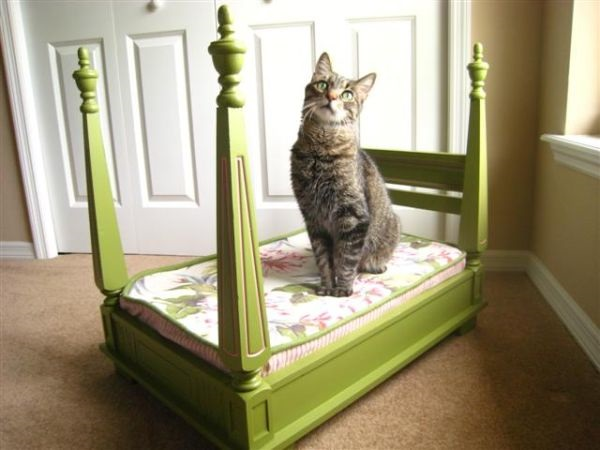 RESIZED.diy-pet-bed