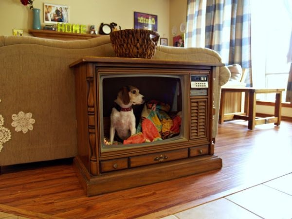 RESIZED.old-tv-pet-bed